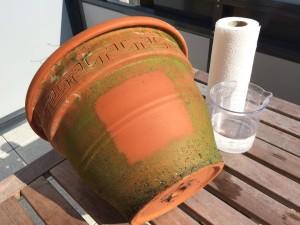 Kalkablagerungen und Grünspan auf Terrakotta Topf entfernt