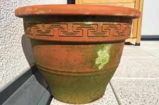 Terrakotta Topf reinigen (Kalkablagerungen, Grünspan, Algen)