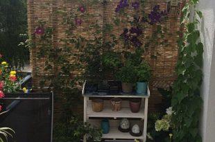 Balkon Bambus Sichtschutz selber gebaut fertig