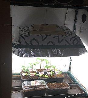 Pflanzenanzuchtstation selber bauen konstruktion