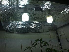 Pflanzenanzuchtstation selber bauen reflektor