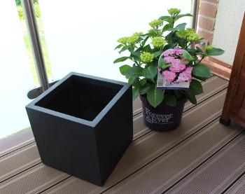 Pflanzkübel aus Fiberglas richtig bepflanzen