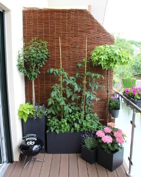 Pflanzkübel aus Fiberglas bepflanzt