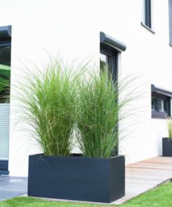 Pflanzkübel als Sichtschutz mit Gräsern