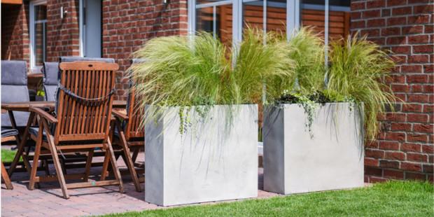 Sichtschutz Idee mit Kübelpflanzen und Gras