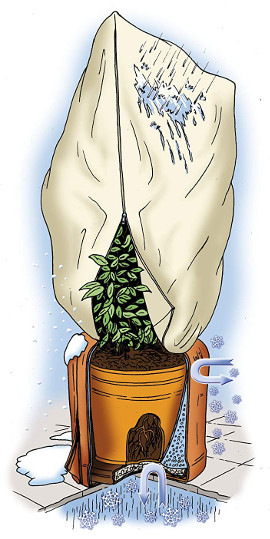 Balkonpflanzen winterfest machen Jute frostschutz
