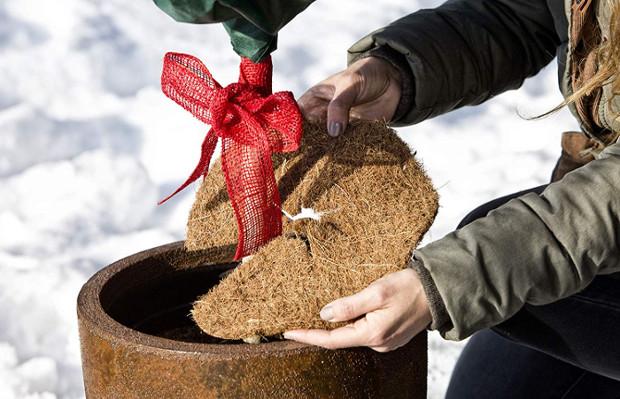 Pflanzen winterfest machen mit Jute und Schleife