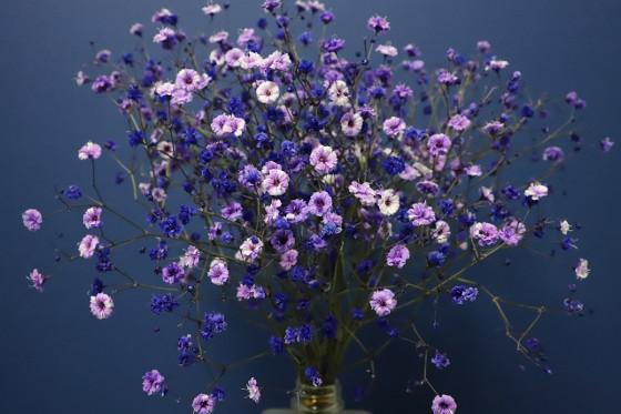 Schnittblumen inszenieren in Vase